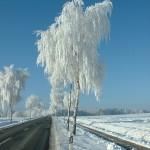 Auf dem Weg zwischen Römstedt und Bad Bevensen
